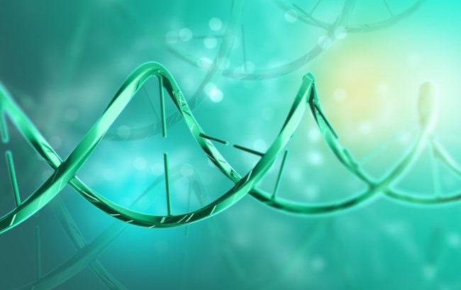 Melanoma, l'Ieo scopre una molecola che blocca le metastasi
