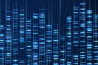 Malattie ematologiche, parte il progetto europeo GenoMed4Al che unisce AI e genomica
