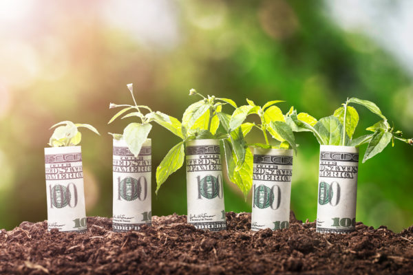 """Competitivi e sostenibili, essere """"green"""" conviene"""