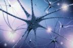 Life science, da Angelini 35 milioni per un fondo che investe in startup del sistema nervoso