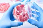 Residui di farmaci negli alimenti: non conforme solo lo 0,1% dei campioni
