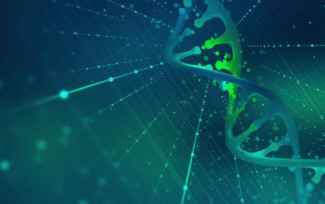 Al via la sperimentazione clinica della terapia di editing genetico per l'infezione da Hiv
