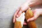 Salute animale, Jab holding avvia una partnership con Bnp Paribas Cardif (e compra la piattaforma Figo)